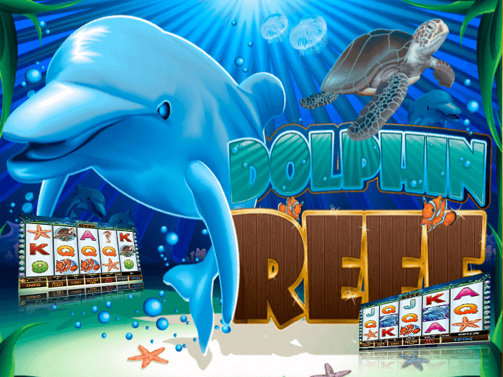 dolphin-reef-slot-game